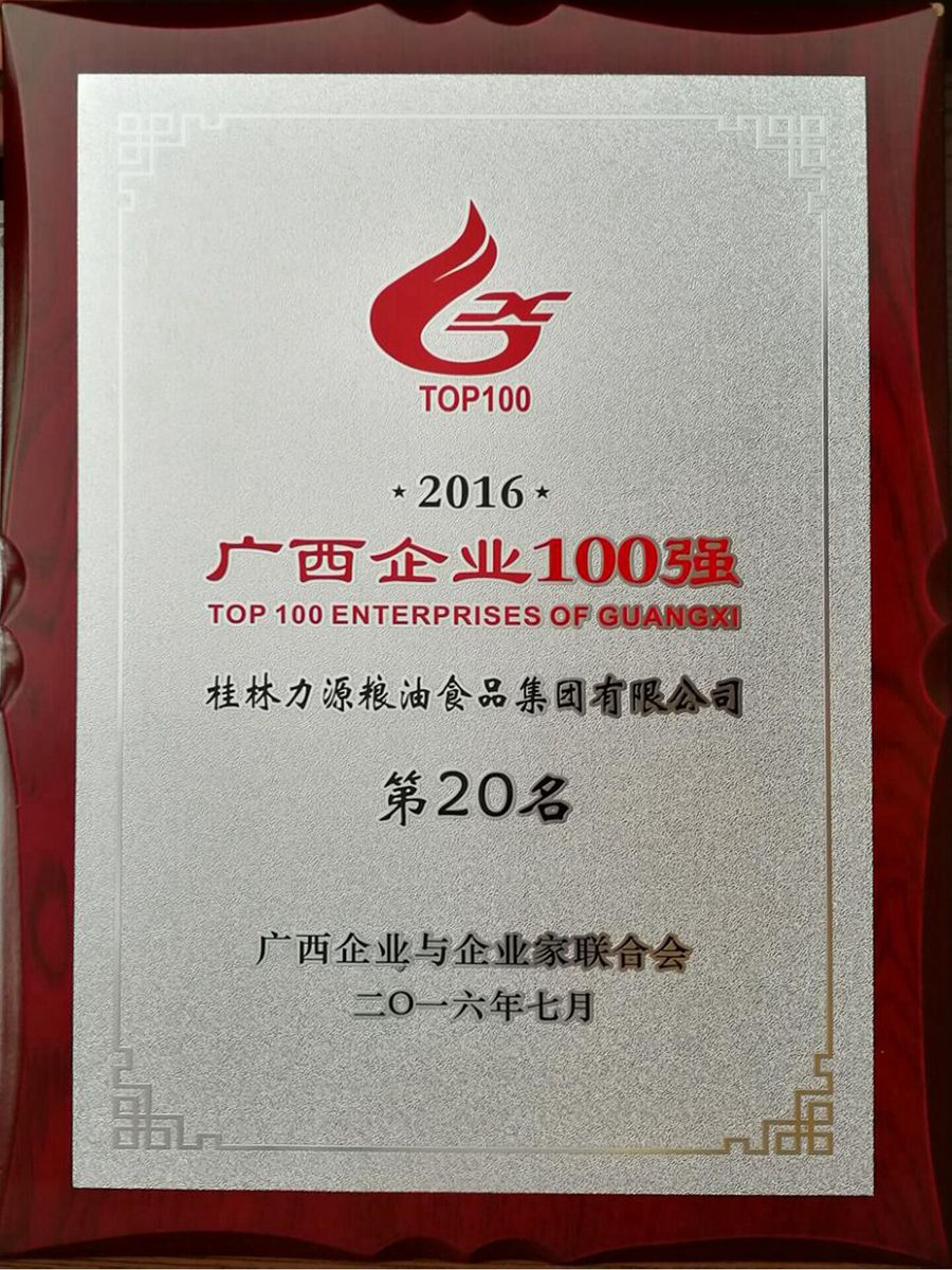 2016年广西企业100强第20名