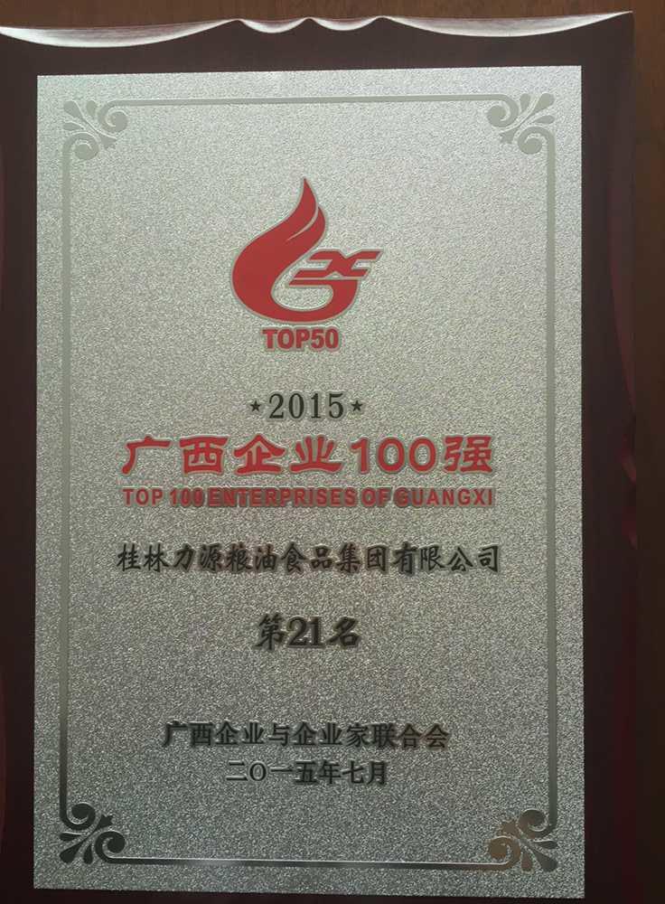 2015年广西企业100强第21名