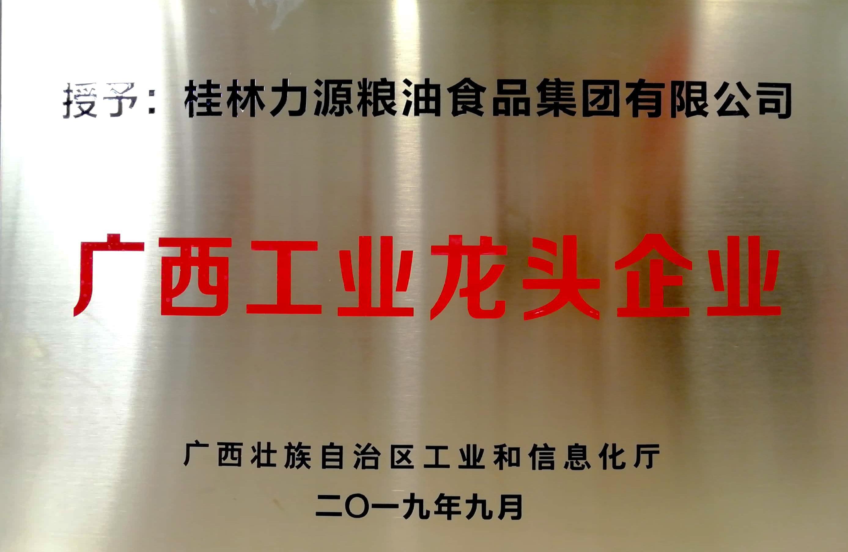 广西工业龙头企业
